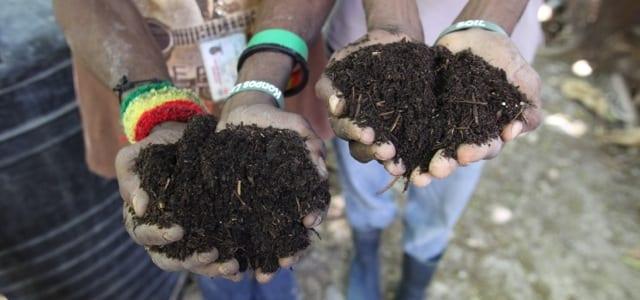 140623 PAP ProfVic Pretty Compost Lafa Bazar