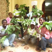 May 2013 Newsletter: A Sustainable Sanitation Revolution