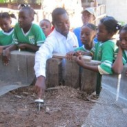 Positive News: Waste Not, Want Not: How Human Waste is Being Turned Into Help for Haiti