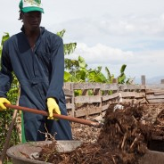 SOIL Research Published in the Journal of Water, Sanitation and Hygiene for Development