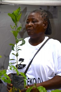 Madame Bwa planting a tree in Shada from SOIL's nursery.