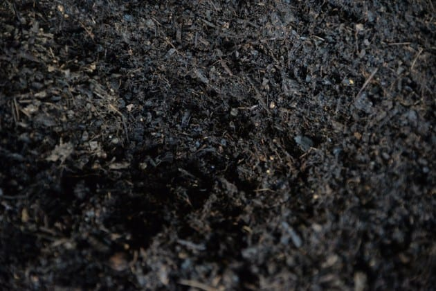 Finished SOIL compost