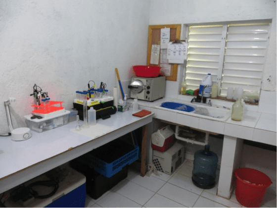 The lab at the office, where I spent much of my time testing urine.